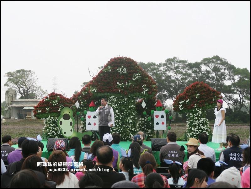 楊梅仙草節39.JPG