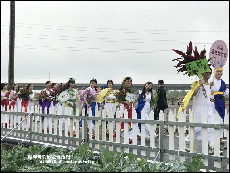 楊梅仙草節49.JPG