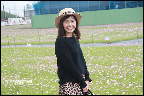 楊梅仙草節30.JPG