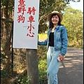 楊梅落羽松秘境24.JPG