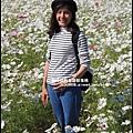 平鎮花彩節8.JPG