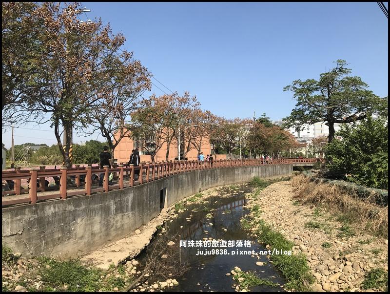 平鎮花彩節67.JPG