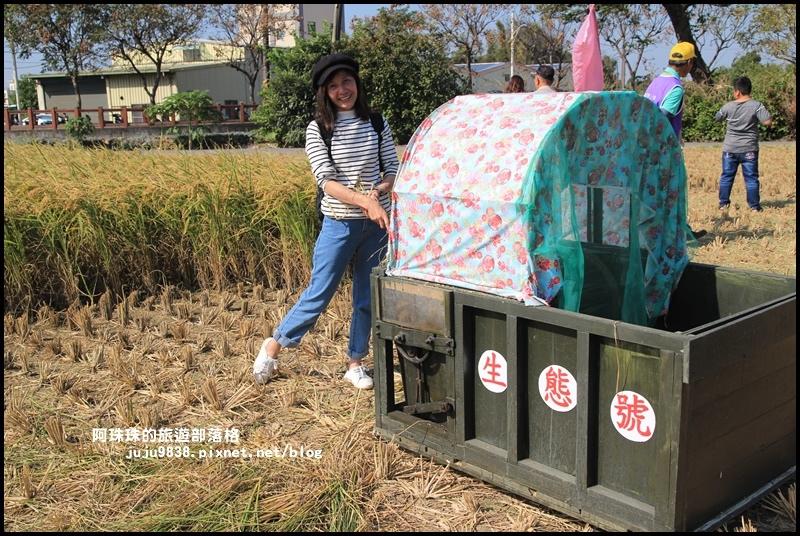 平鎮花彩節39.JPG