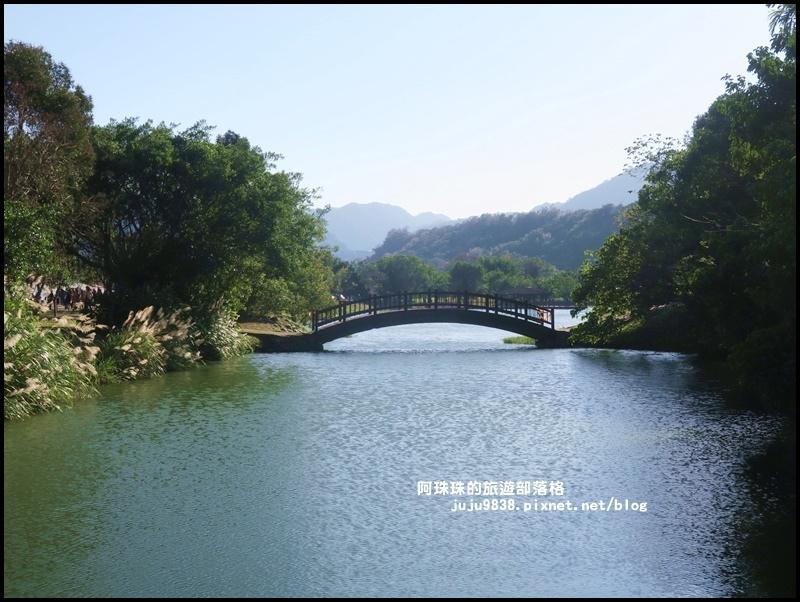 三坑生態公園28.JPG
