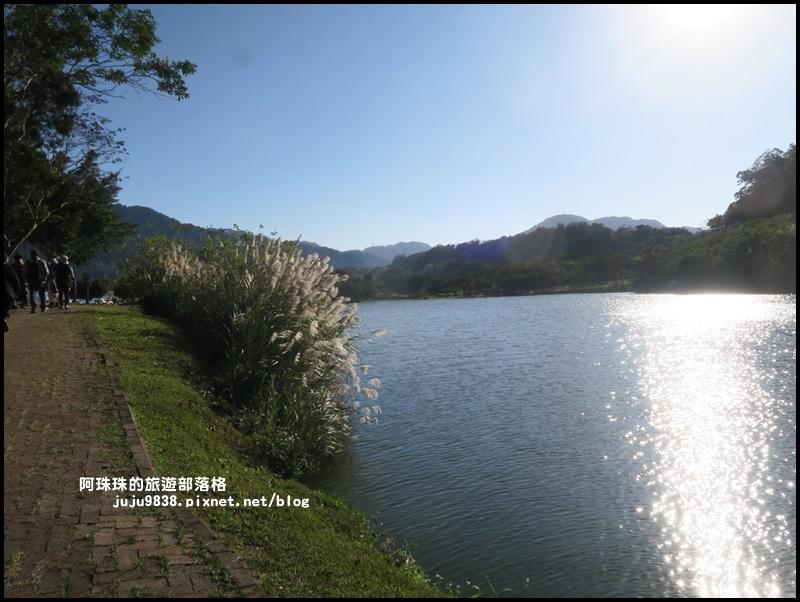 三坑生態公園32.JPG