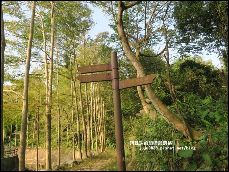 三坑生態公園68.JPG