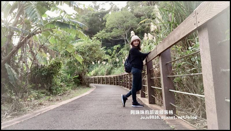 三坑生態公園81.JPG