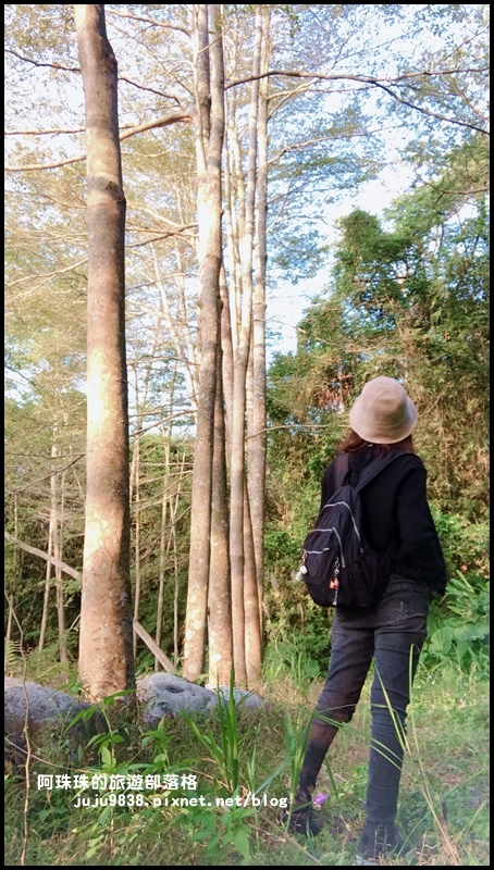 三坑生態公園94.JPG