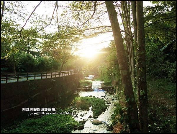 小葉欖仁秘境步道27.JPG