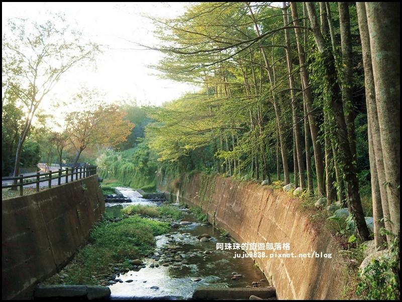 小葉欖仁秘境步道28.JPG