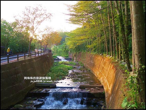 小葉欖仁秘境步道29.JPG