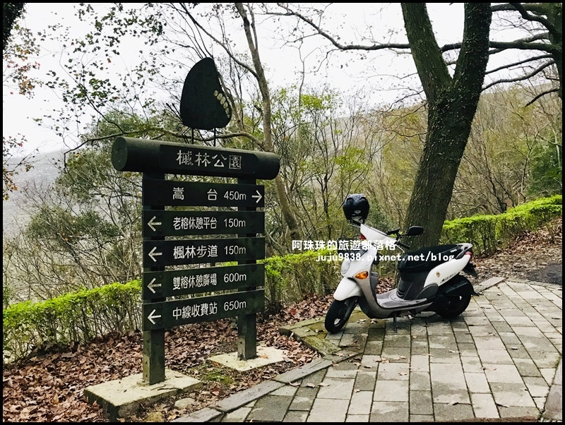 石門水庫楓紅29.JPG