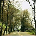 石門水庫楓紅40.JPG