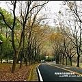 石門水庫楓紅48.JPG