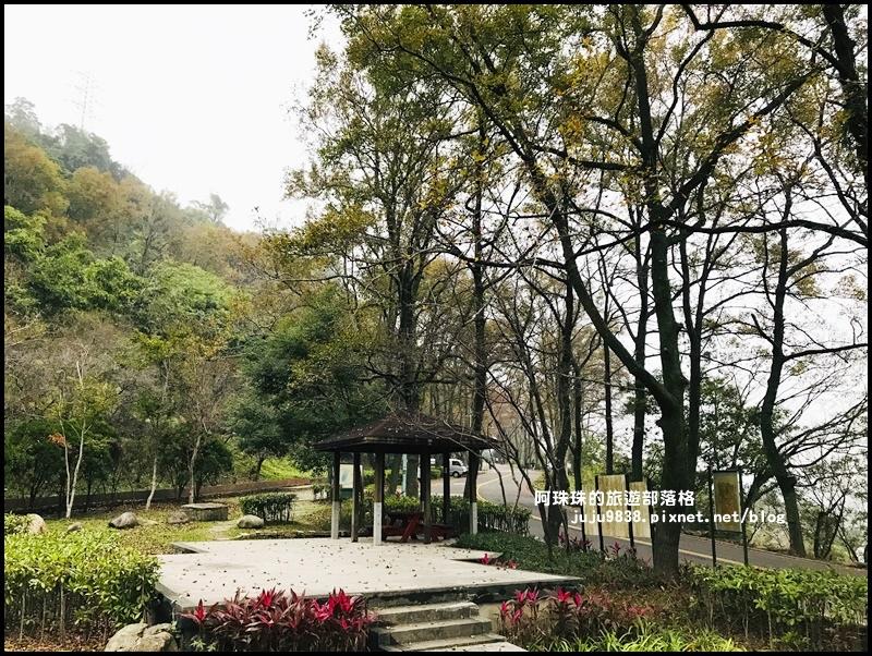 石門水庫楓紅46.JPG