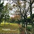 石門水庫楓紅60.JPG