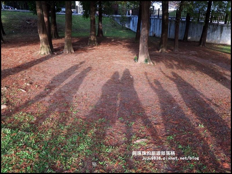 大湖公園28.JPG