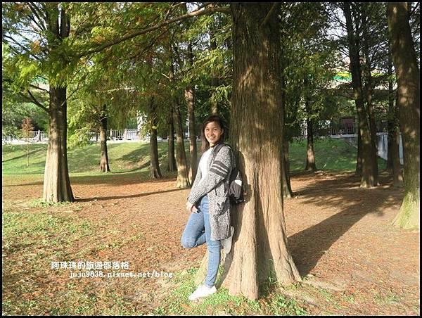 大湖公園26.JPG