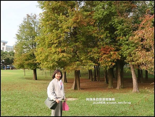 大湖公園22.JPG