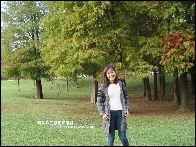 大湖公園21.JPG