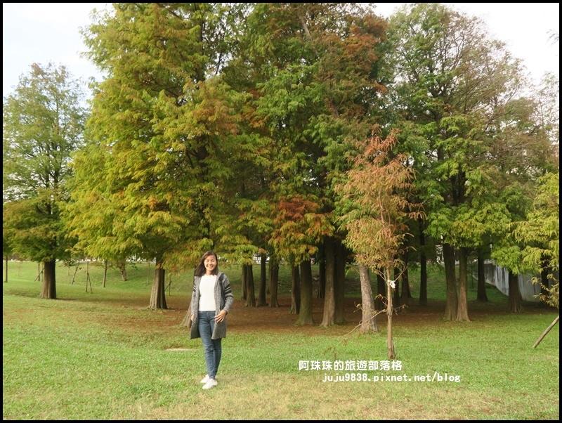 大湖公園20.JPG
