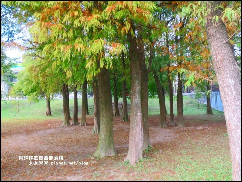 大湖公園18.JPG