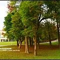大湖公園15.JPG