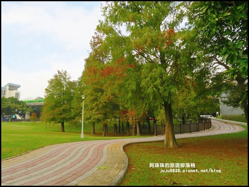大湖公園16.JPG