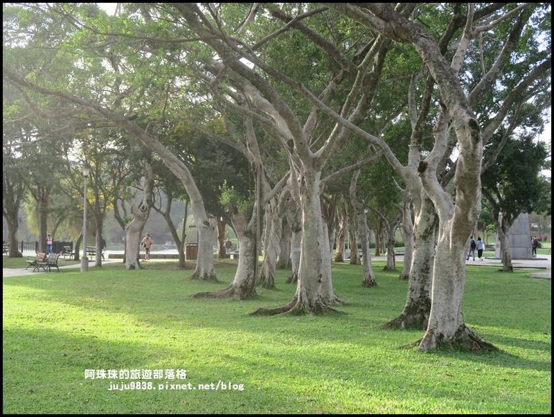 大湖公園11.JPG