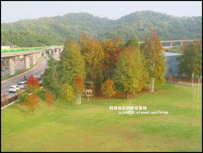 大湖公園31.JPG