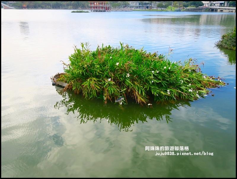 大湖公園1.JPG