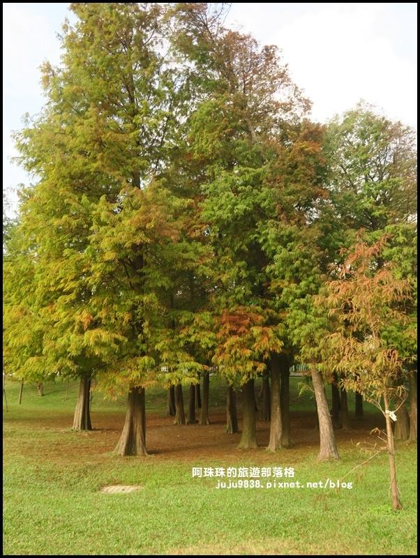 大湖公園23.JPG