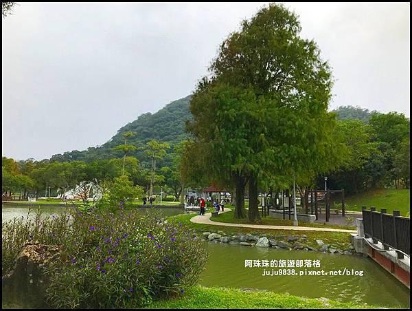 大湖公園33.JPG