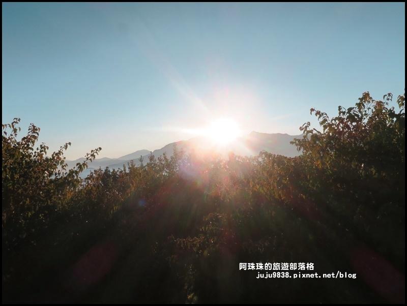 阿里山日出34.JPG