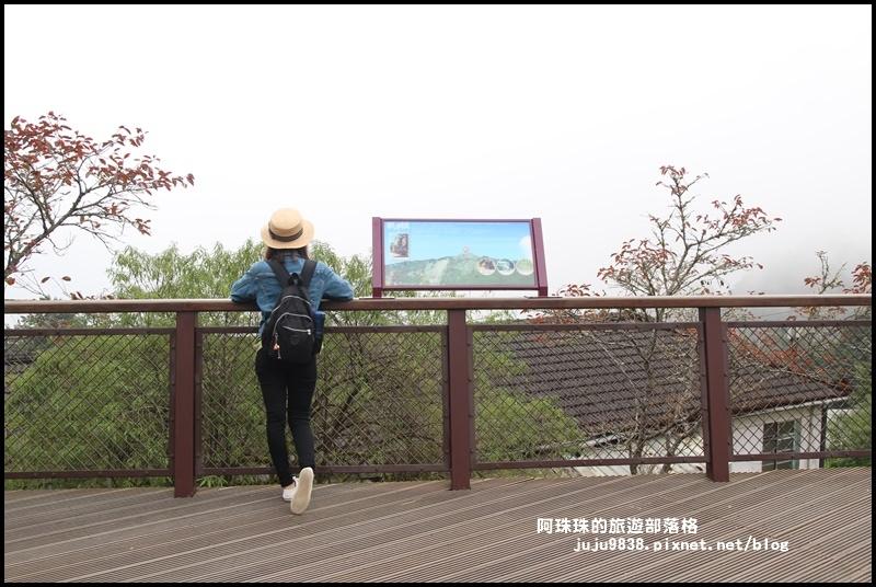 阿里山8.JPG