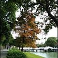 碧湖公園5.JPG