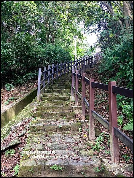 碧湖公園14.JPG