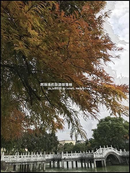 碧湖公園48.JPG