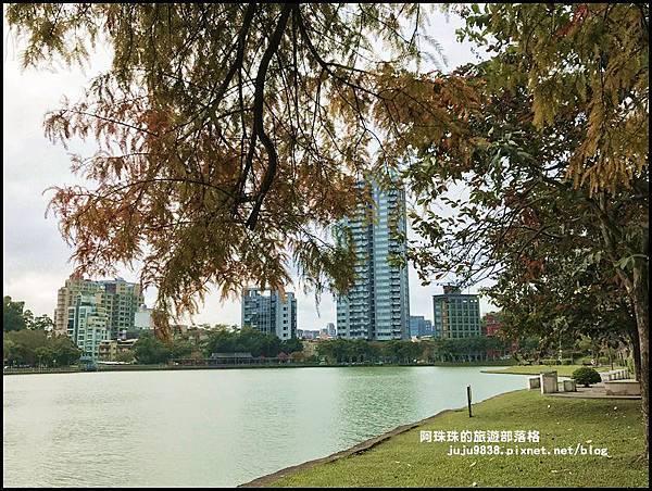 碧湖公園49.JPG