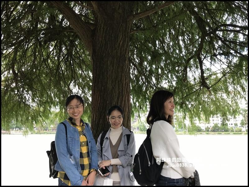 碧湖公園43.JPG
