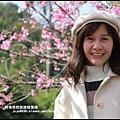 花園新城櫻花16.JPG