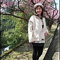花園新城櫻花8.JPG