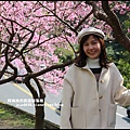 花園新城櫻花10.JPG