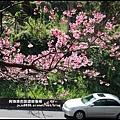 花園新城櫻花12.JPG