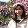 花園新城櫻花6.JPG
