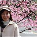 花園新城櫻花2.JPG