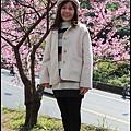 花園新城櫻花4.JPG