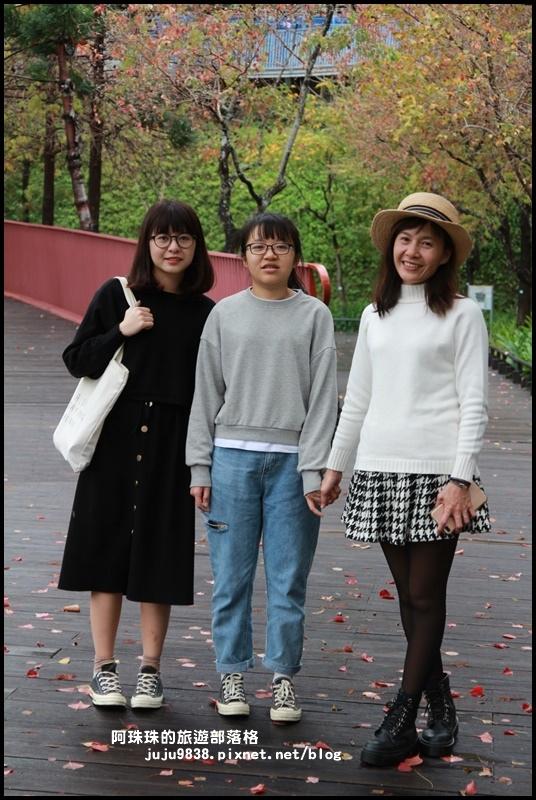 秋虹谷31.JPG