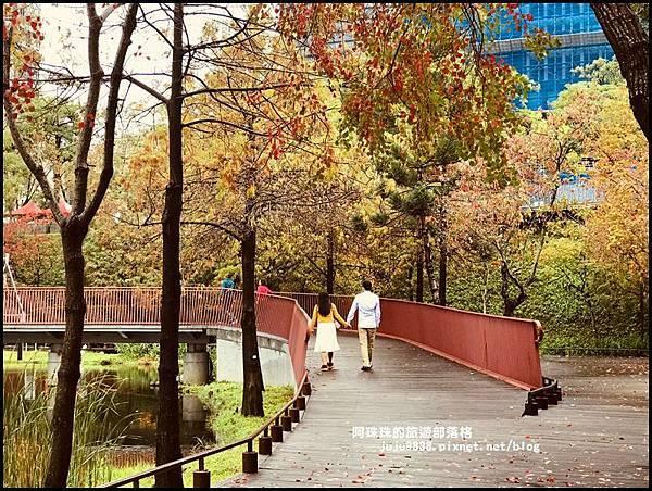 秋虹谷5.JPG