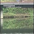 秋虹谷3.JPG